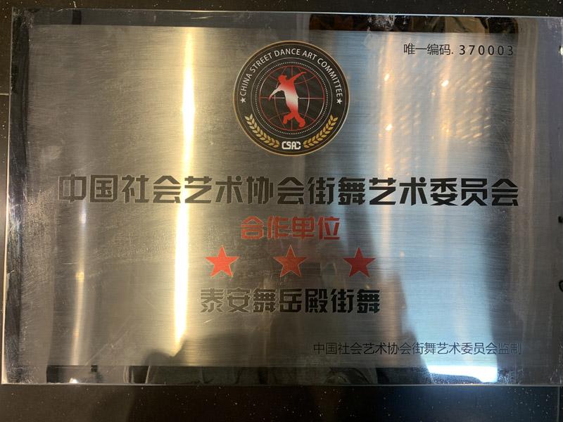 中国社会艺术协会街舞艺术委员会合作单位