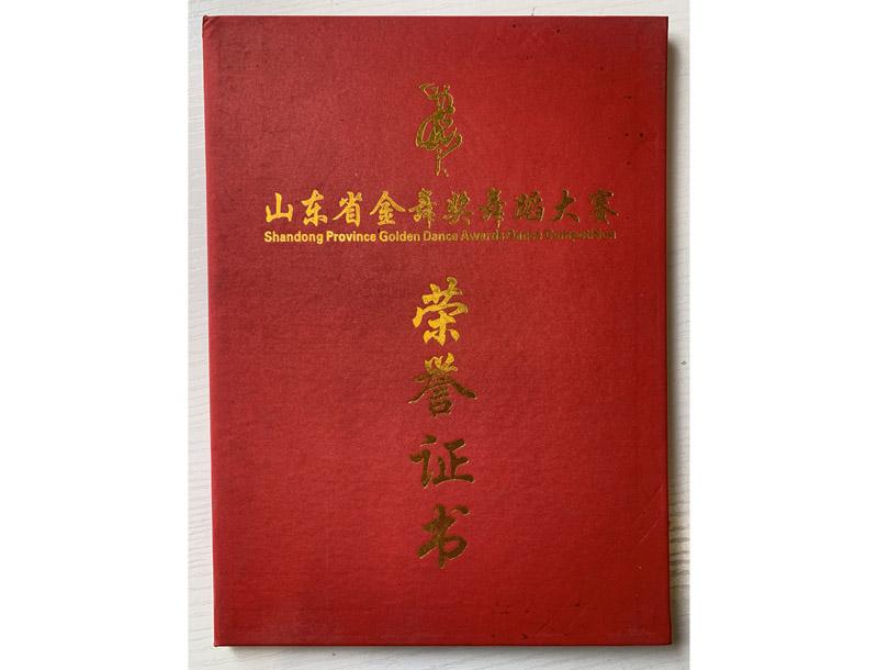 山东省金舞奖荣誉证书