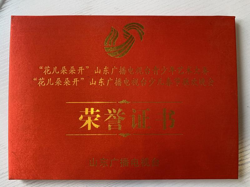 山东广播电视台少儿春晚荣誉证书